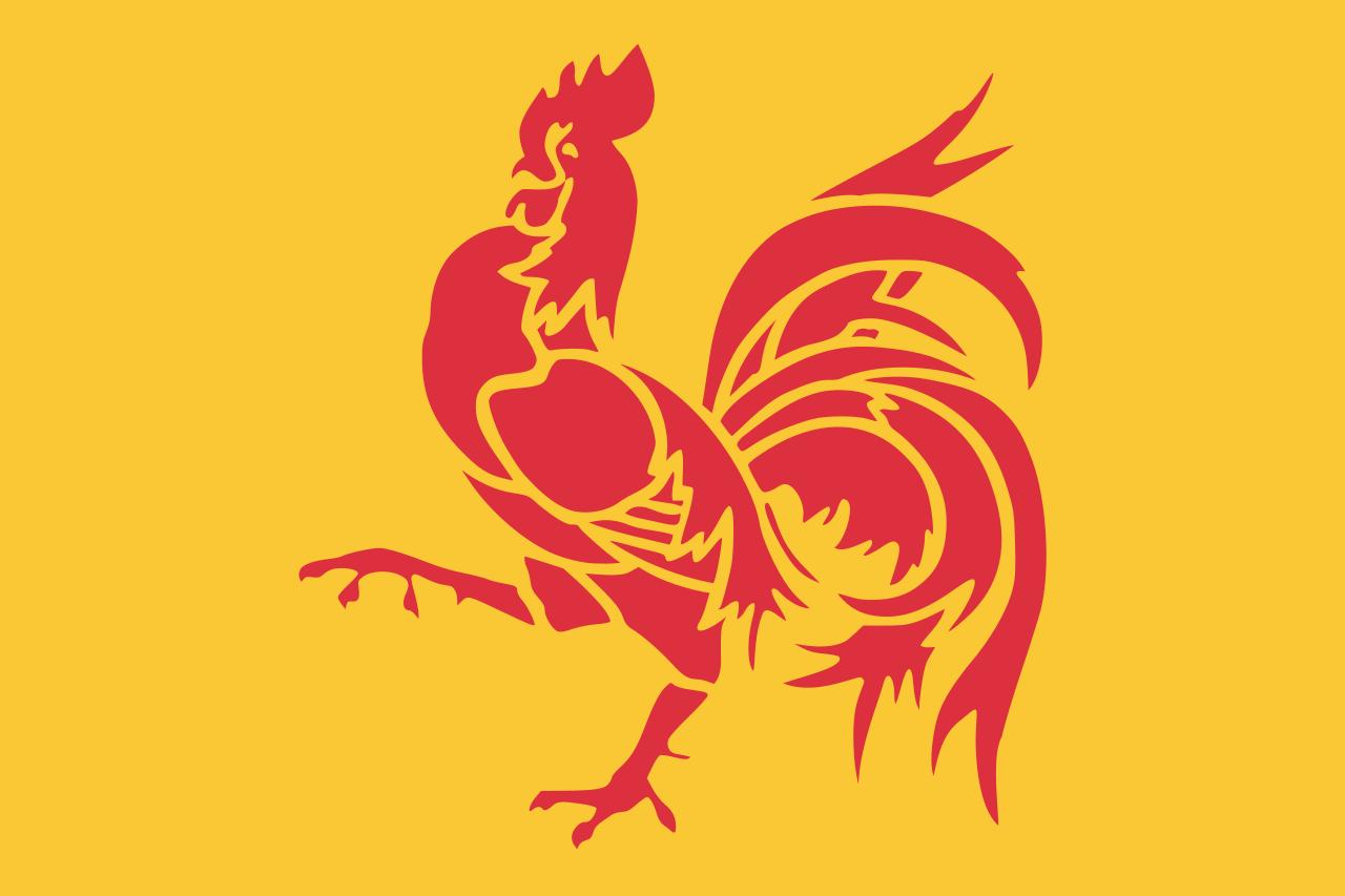 wallonie-vlag